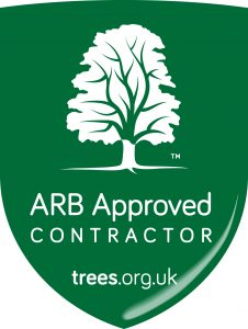 ARB Approved Logo 16